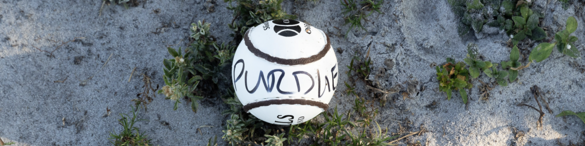 Purdue Hurling ball in the Florida sand